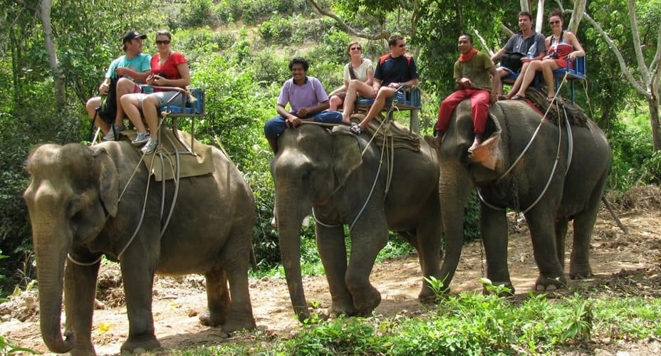 elephant tour krabi