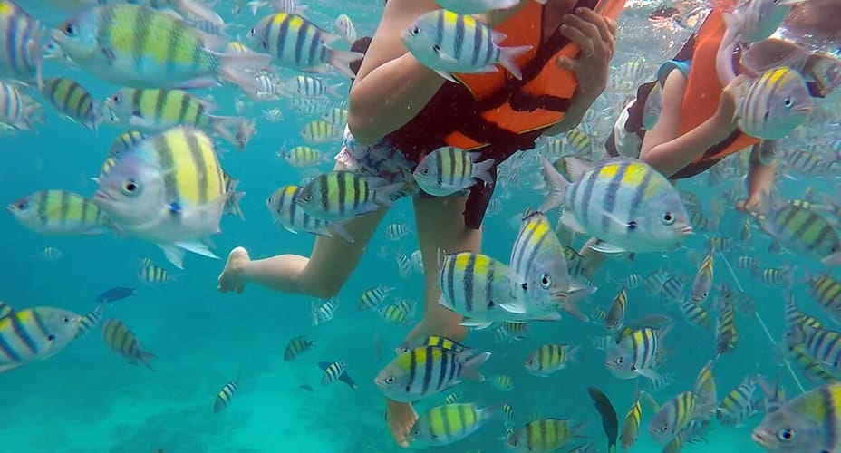snorkeling krabi tours hong islands