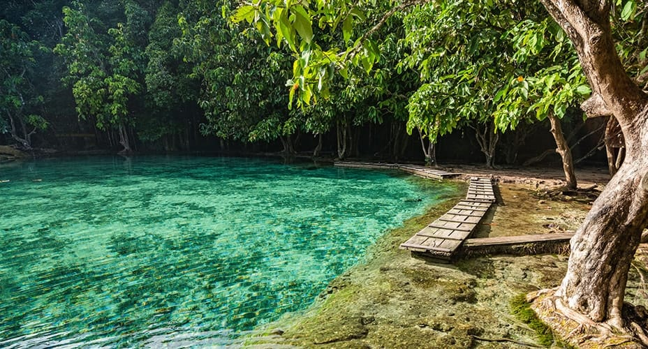 tour to emerald pool krabi ao nang